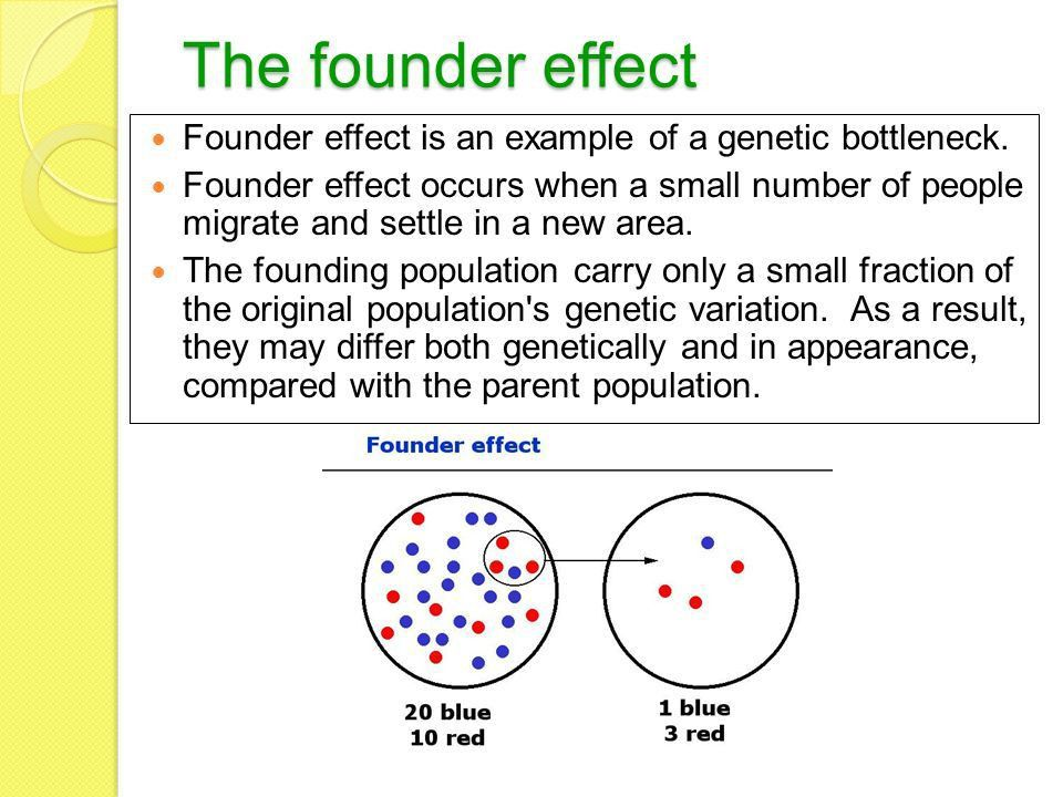 POPULATION GENETICS In-build mechanisms for adaptation (or ...