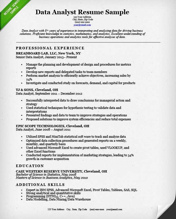 data entry resume sample resume example