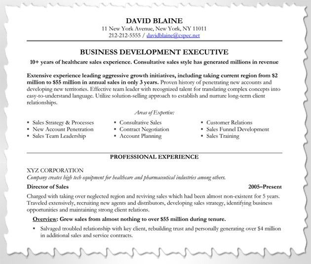 executive recruiter resume executive recruiter resume download. hr ...