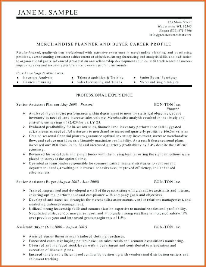 Resume Summary Statement Examples – Okurgezer.co