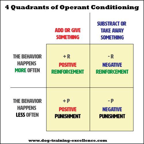 Operant Conditioning, using positive vs. negative dog training ...