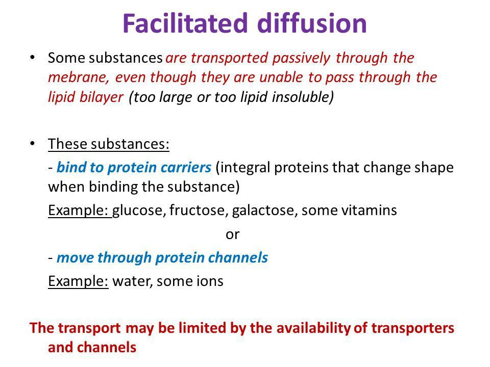 Topic #1 The plasma membrane & Cellular Transport - ppt video ...