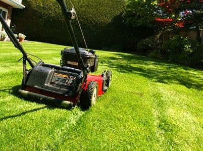 How Much Should I Pay My Teenager to Mow the Lawn?
