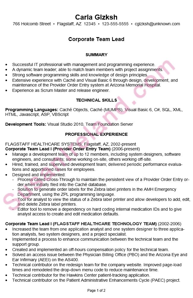 sample resumes for it professionals resume objective for it ...