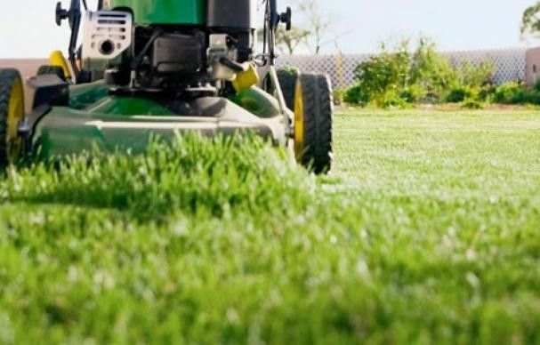 Six Lawn-Care Mistakes to Nix | This Old House