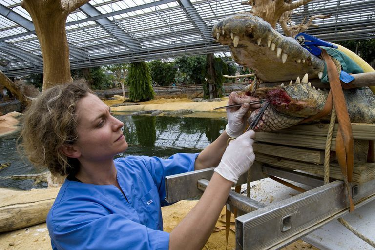Zoo Career Options with Salary Information