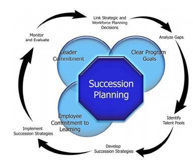 Everything You Ever Wanted To Know About Succession Planning In 15 ...