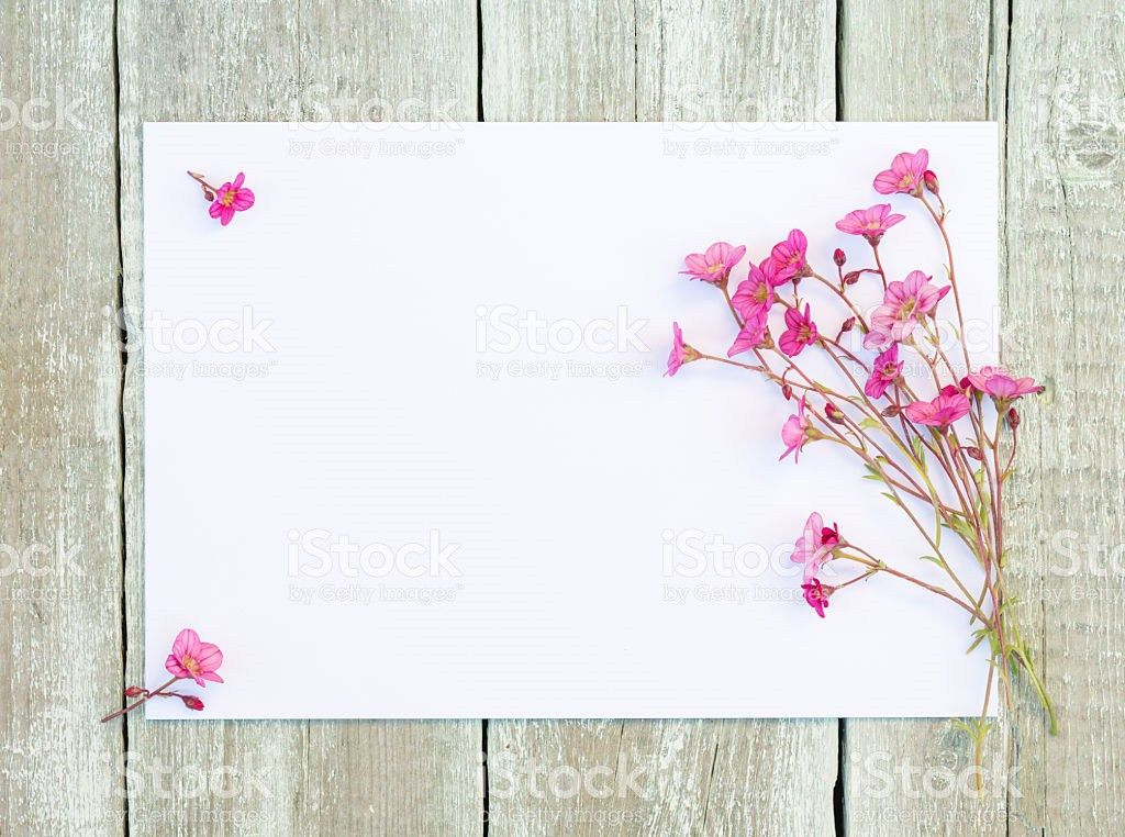 Wildflowers Pink Flowers With Blank Paper On Wooden Background ...