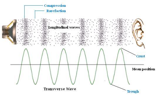 Sound Reflection, Reverberation, Echo Sound | Physics@TutorVista.com