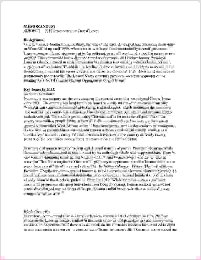 3+ policy memo sampleReport Template Document | report template