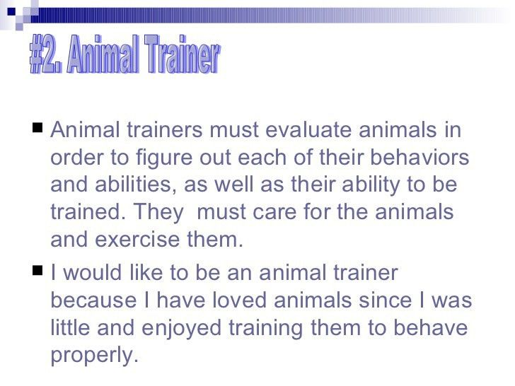 how do i become an animal trainer. how to become an animal trainer ...