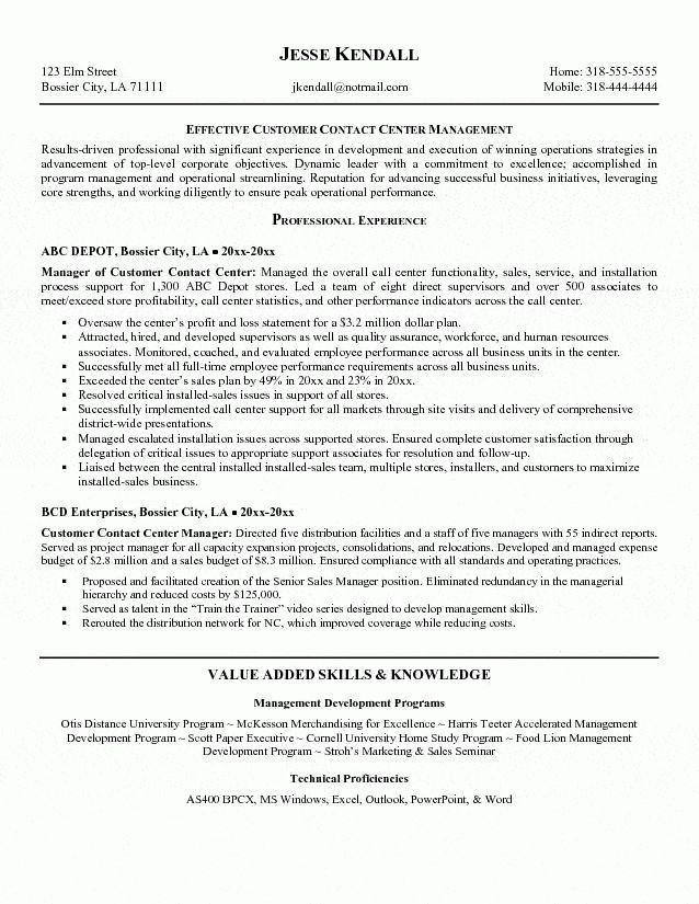call center director resume