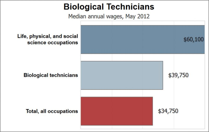 Online Resources for Salary Information | Biotech Careers
