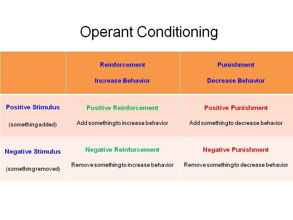 Reinforcement Theory version 1. - PSYCH 484: Work Attitudes and ...