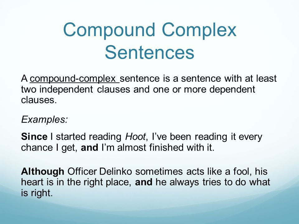 Sentence Types. - ppt video online download