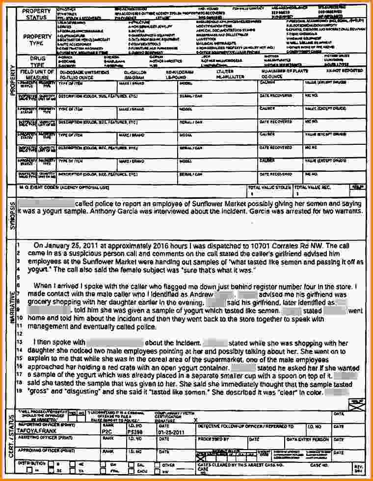 Police Report Example.police Report Template Pdf.jpg - LetterHead ...