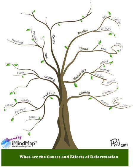 Top 25+ best Mind map download ideas on Pinterest   Mind map free ...