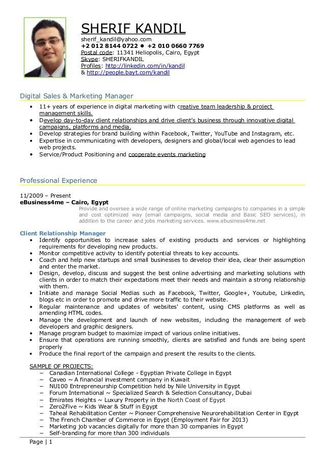 digital marketing resume template digital marketing manager cv