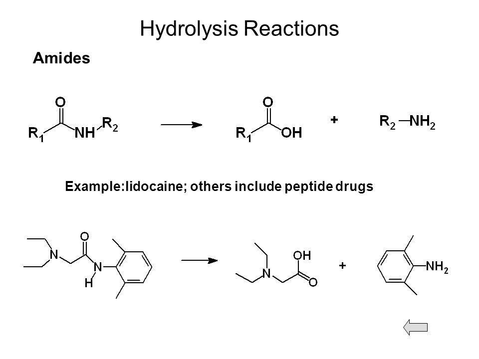 Drug Metabolism S.P. Markey Laboratory of Neurotoxicology NIMH ...