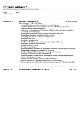 Project Coordinator Resume Sample | Velvet Jobs
