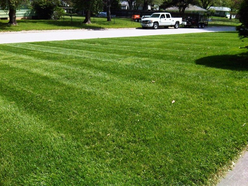 Affordable Lawn Mowing Service in Raytown, MO - Get a FREE ONLINE ...