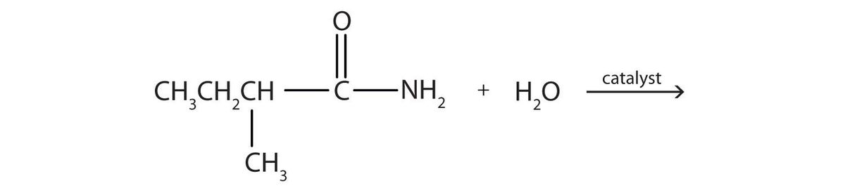 15.17: Chemical Properties of Amides: Hydrolysis - Chemistry ...