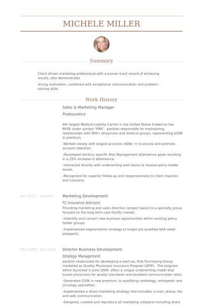 Sales & Marketing Manager Resume samples - VisualCV resume samples ...