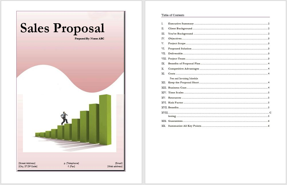 Sales Proposal Example | Word Documents & Templates