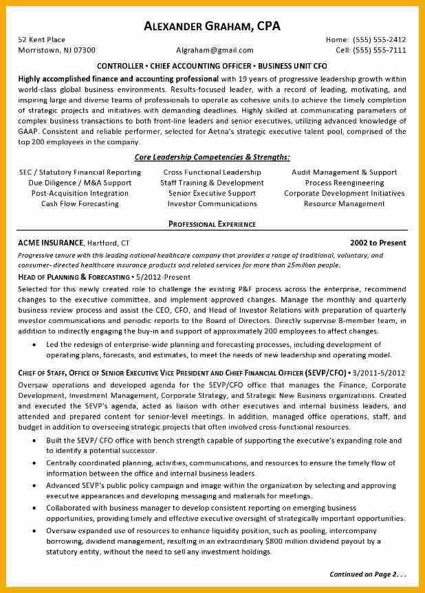 100+ Controller Resume Samples | Business Unit Director Resume ...