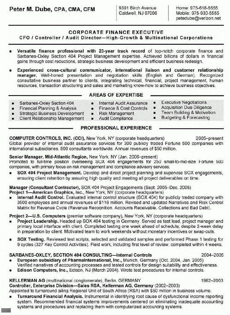 senior resume template resume sample 8 senior executive resume