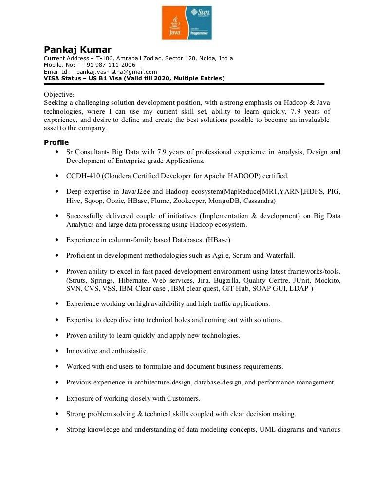 Pankaj Resume for Hadoop,Java,J2EE - Outside World