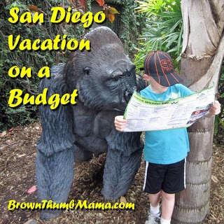 18a53cdafe72330e2789525095471421 - summer family vacation ideas on a budget best places to visit