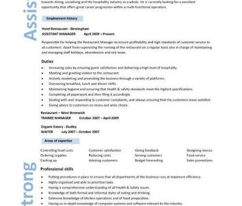 sample resumes for managers sales resume format sales resume ...