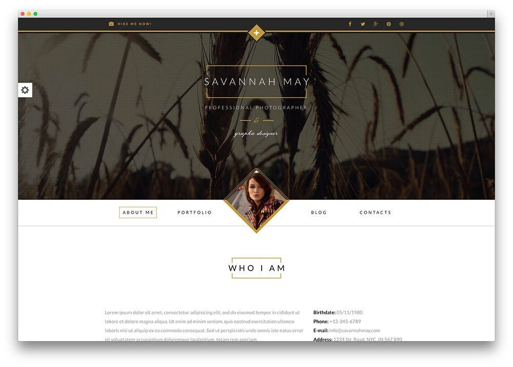 30 Best vCard WordPress Themes 2017 For Your Online Resume - Colorlib