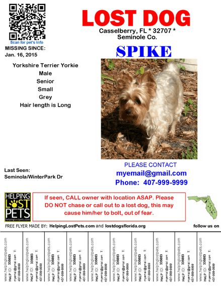 Free flyers - Lost Dogs Florida
