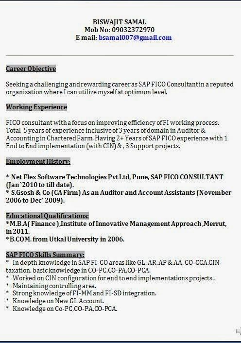 Sap Security Consultant Sample Resume] Tp Security Cv, Sap ...