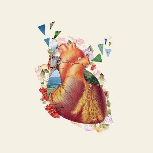 42 best i'm a cardiac sonographer images on Pinterest | Nursing ...