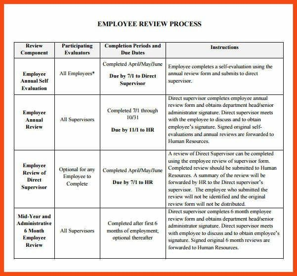 employee review template | program format