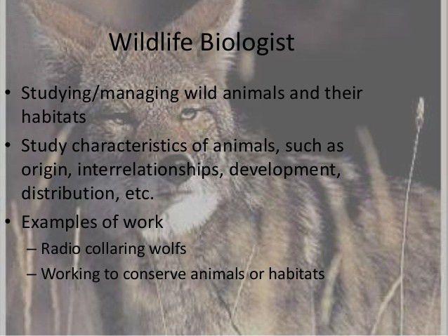 Wildlife biologist powerpoint