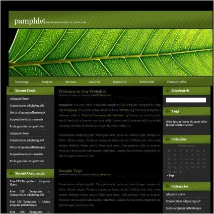 Pamphlet Free website templates in css, html, js format for free ...