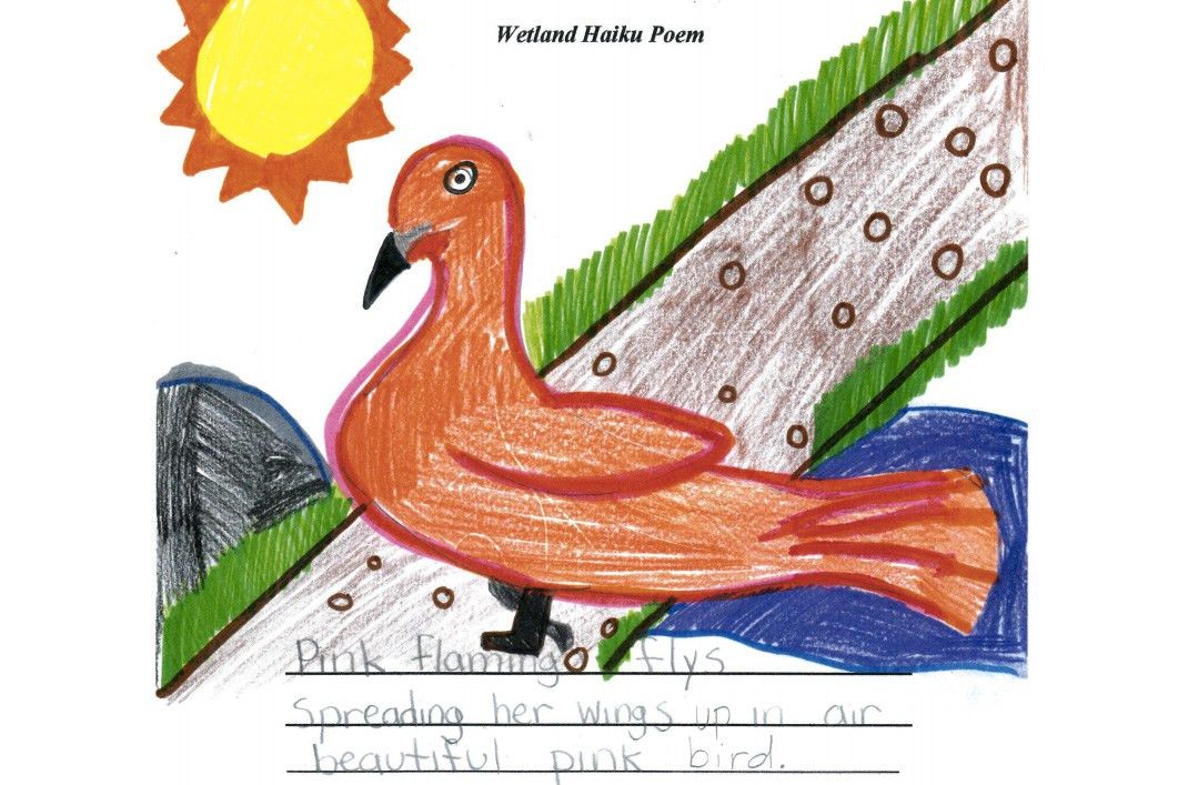 Activity 5: Haiku poems | Environmental lessons for 3rd-5th grade