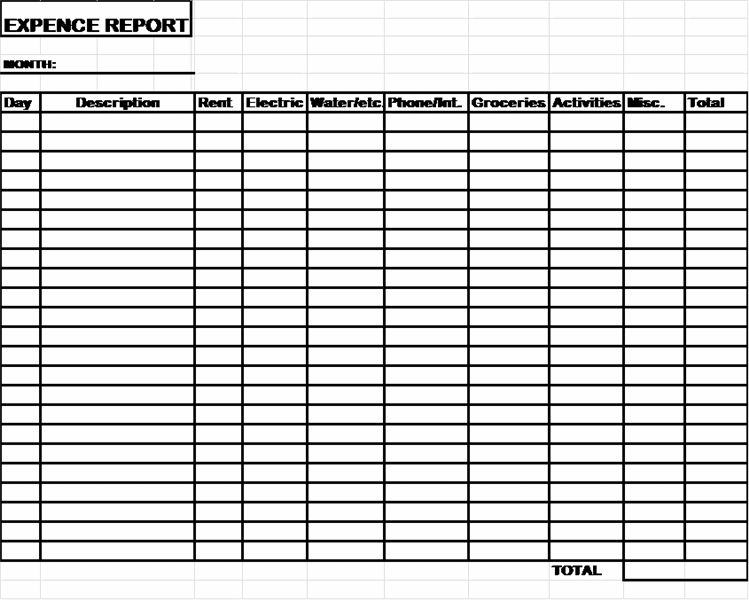 Child Care Expense Report Template