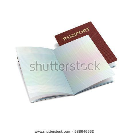 Vector International Passport Template Sample Personal Stock ...
