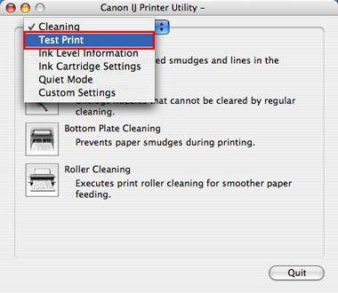 Cleaning the Print Head Nozzles (Mac OS X)