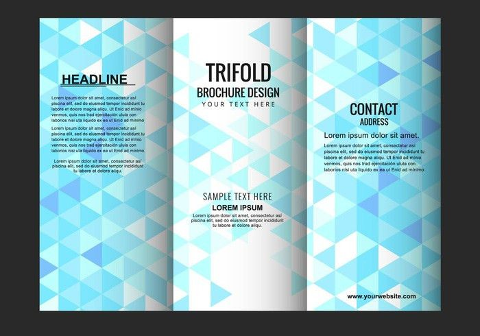 Free Vector Trifold Brochure Template - Download Free Vector Art ...