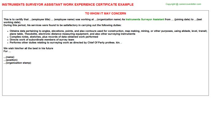 Instruments Surveyor Assistant Work Experience Certificate