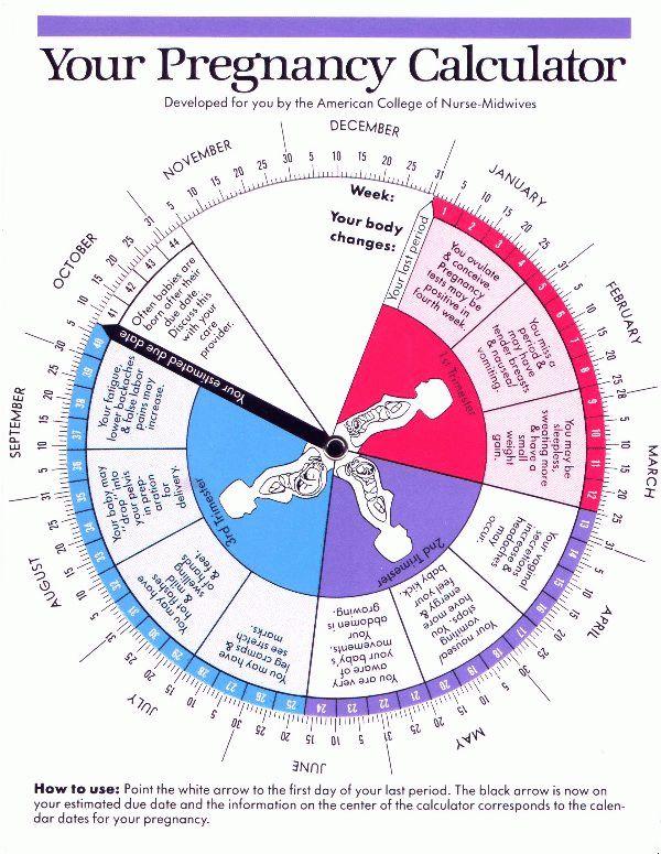 pregnancy calendar date | Calendar 2017