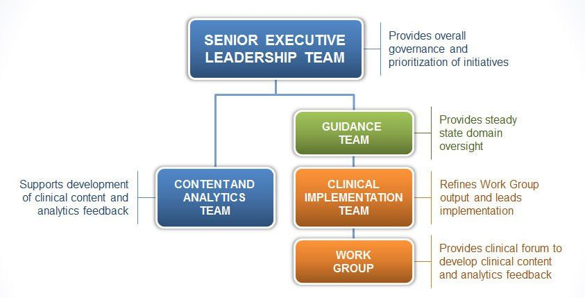 Best Organizational Structure for Healthcare Analytics