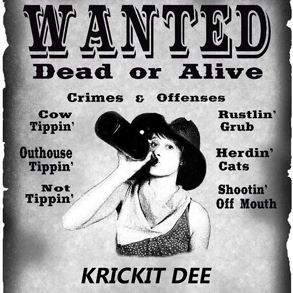 Old Fashioned Wanted Poster | Enwurf.csat.co
