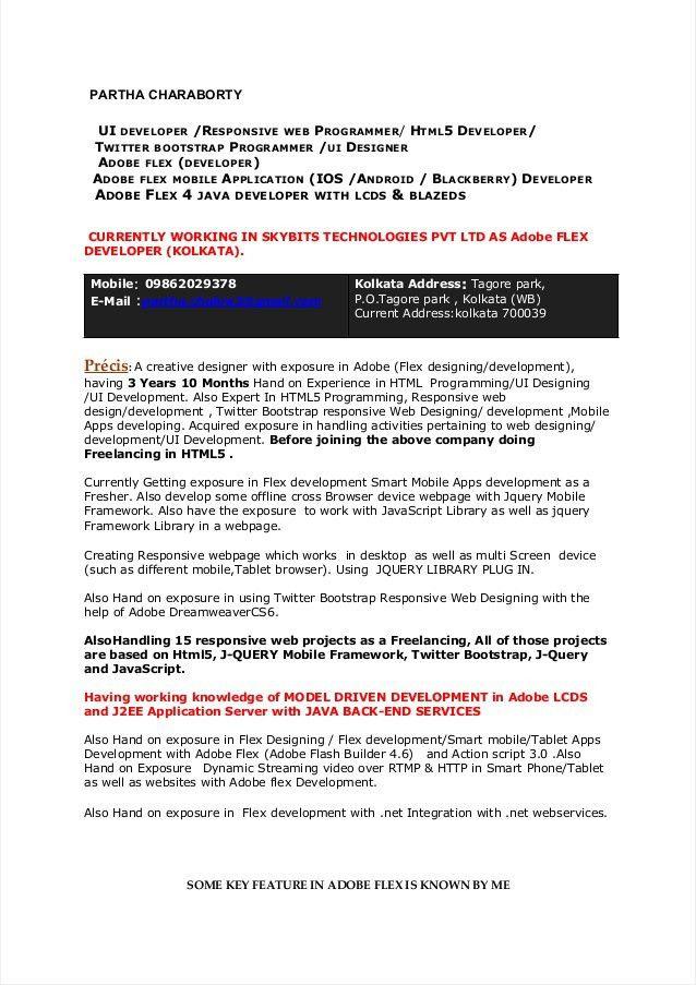 Programmer Resume Template 8 Free Samples Examples Format Partha   Flash Programmer  Resume  Entry Level Programmer Resume